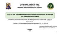 Toxicidade e mecanismos relacionados da dihidroartemisinina na maturação in vitro de oócitos suínos