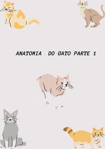 Anatomia do gato parte 1