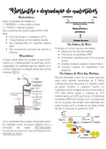 Biossíntese e Degradação de Nucleotídeos
