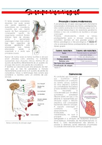 Sincope vasovagal | PATOLOGIA