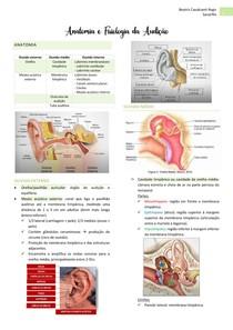 Otorrino Anatomia e Fisiologia da Audição