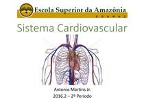 Aula 8 - Sistema Cardiovascular