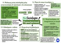 Mapa mental da quarta aula de Sociologia Organizacional