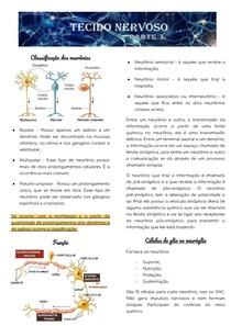 Tecido Nervoso - part. 3
