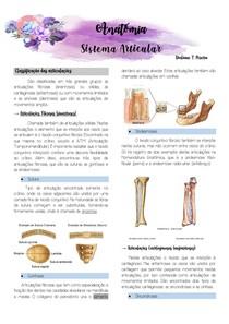 Anatomia- Sistema Articular