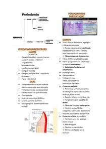 histo np3- periodonto