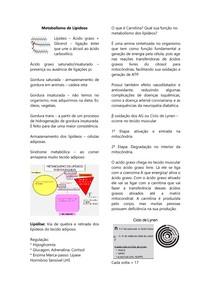 Metabolismo de Lipídeos - Beta Oxidação