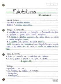 Metabolismo ao carboidrato