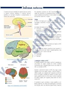 Patologias Do Sistema Nervoso - Parte I