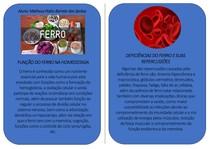 FOLDER EXPLICATIVO - MICRONUTRIENTE: FERRO