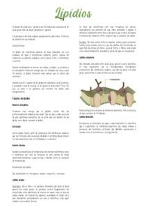 Lipídios - Bioquímica