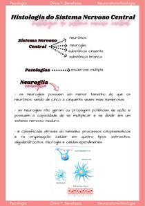 Histologia do Sistema Nervoso Central