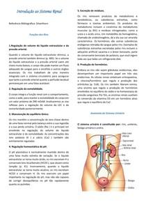Resumo - Introdução ao Sistema Renal