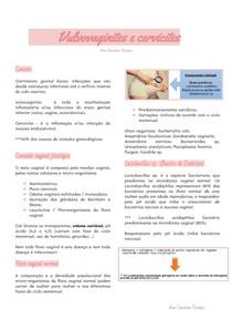 Vulvovaginites e cervicites
