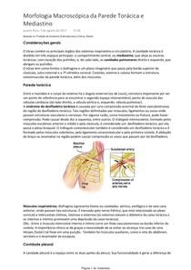 Morfologia Macroscópica da Parede Torácica e Mediastino