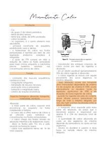 Micronutrientes Cálcio