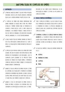 Anatomia Óssea do Complexo do Ombro