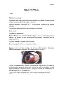 Resumo Anatomia do olho