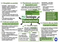 Mapa mental da sexta aula de Sociologia Organizacional