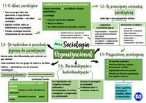 Mapa mental da primeira aula de Sociologia Organizacional
