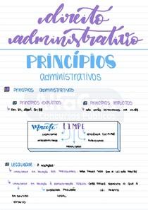 03 Princípios explícitos - Resumo