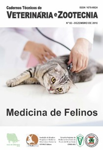 Medicina de felinos