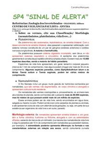 SP4 _SINAL DE ALERTA_