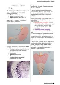 Gastrites e Úlceras