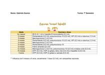 Esquema Vacinal - Criança/Adulto/Idoso/Gestante - Resumo/Tabela