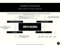 Resumo Sobre o Simples Nacional
