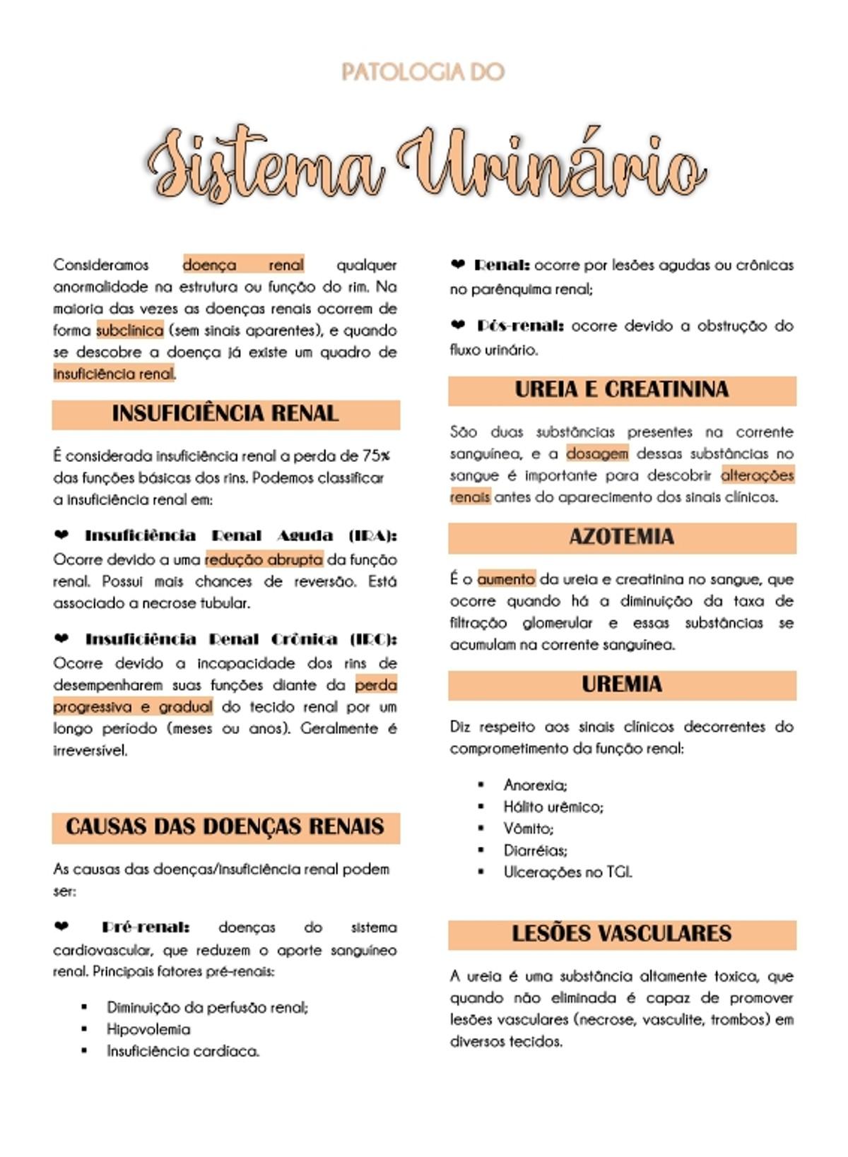 Pre-visualização do material Patologia do sistema urinário - página 1
