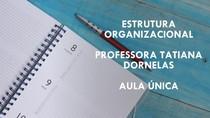 Aula Única - Estrutura Organizacional