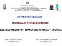 Mec. de Endur. - 6 - Trans. Martensítica