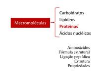Aula 4 Proteínas Biologia Celular