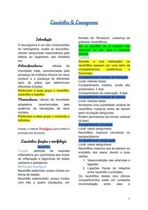 Leucócitos & Leucograma