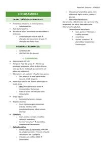 09 - LINCOSAMIDAS
