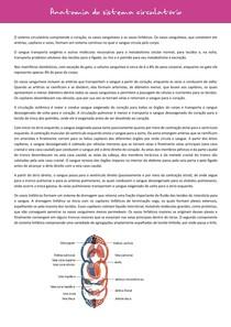 anatomia do sistema circulatório