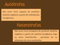 Autótrofos e Heterótrofos