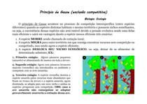 Princípio de Gause - RESUMO