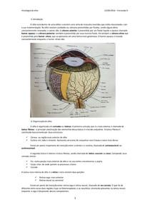 Histologia do Olho