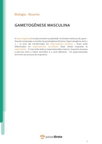 Gametogênese masculina - Resumo