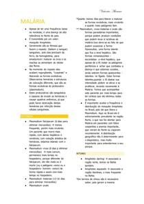 PARASITO- MALÁRIA
