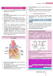 Fisiologia Cardíaca: sistema de excitação e condução