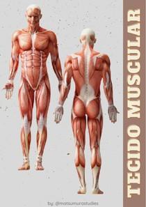 Resumo PDF - Tecido Muscular - @matsumurastudies