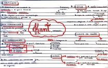 Immanuel Kant [mapa mental]