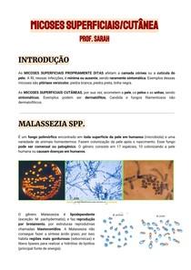 [RESUMO] MICOSES SUPERFICIAIS/CUTÂNEA