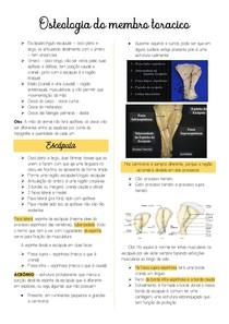 Osteologia do membro toracico