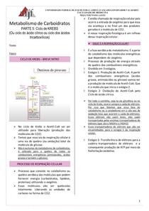 Metabolismo de Carboidratos - CICLO DE KREBS