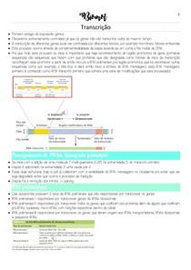 Transcrição genica