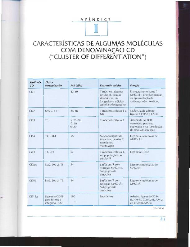livro imunologia vera calich